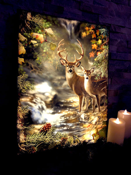Deer Creek - Illuminated Fine Art