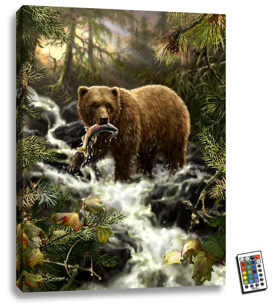 Grizzly Gorge - Illuminated Fine Art