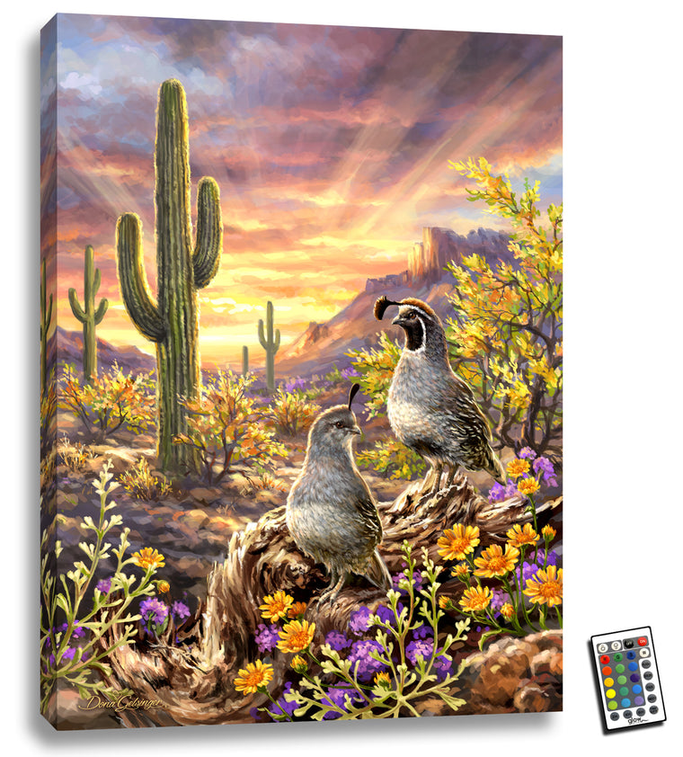 Quail Vista - Illuminated Fine Art