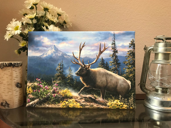 Siskiyou Bluff Canvas Wall Art