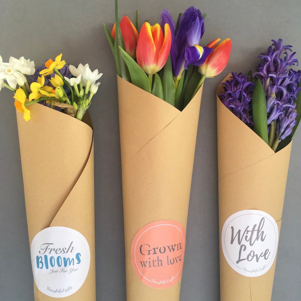 Coral Inspiration Flower Wrap and Grow Gift Set - Designed for British Flower Week - Kelly Rideout Design