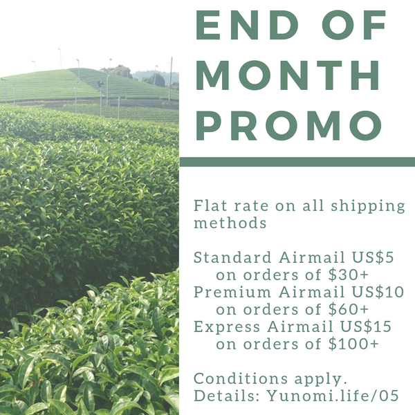 Flat-rate shipping promotion, May 2019