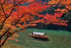 The Colors of a Season: Experience Autumn Foliage from Hokkaido to Kyushu