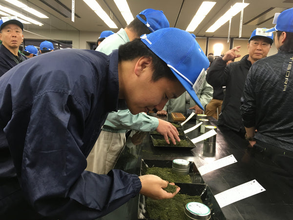 Takuya Homme Selects Tea Leaves at Auction