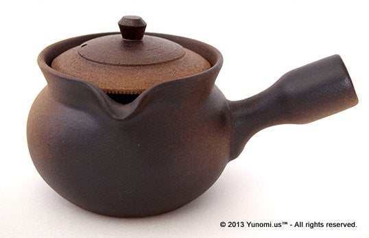 Fujisou: Excellent Kyusu Tea Pot 'Yakijime' Large (450 ml) - 1