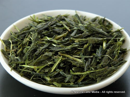 Takeo Tea Farm: Organic Bancha Green Tea, Aoyanagi (May spring harvest) - 1