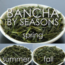 Takeo Tea Farm: Organic Bancha Green Tea, Seasonal Sampler