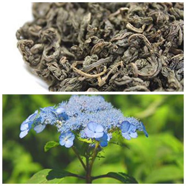 Amacha Herbal Tisane (Hydrangea serrata var. thunbergii) from Kunohe Village