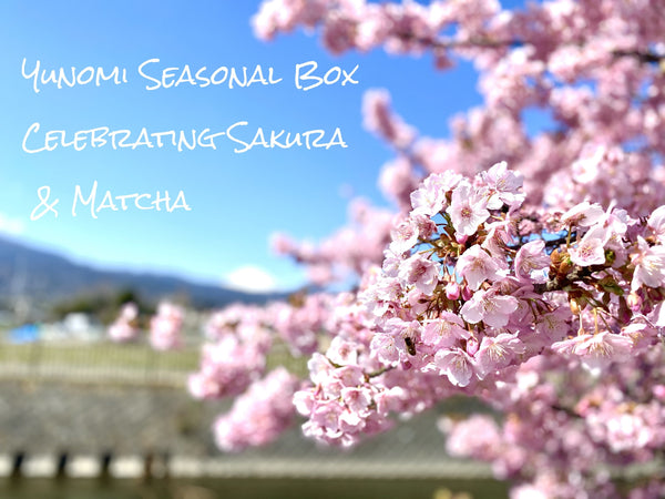 Yunomi Seasonal Box: Celebrating Sakura🌸 & Matcha🍵