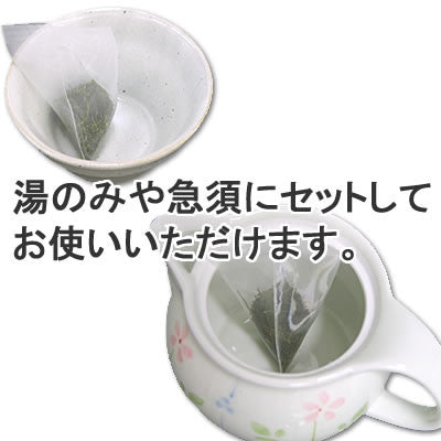 Seiwa 18734: Flat or Pyramid Mesh Tea Bags, 55 x 80 mm
