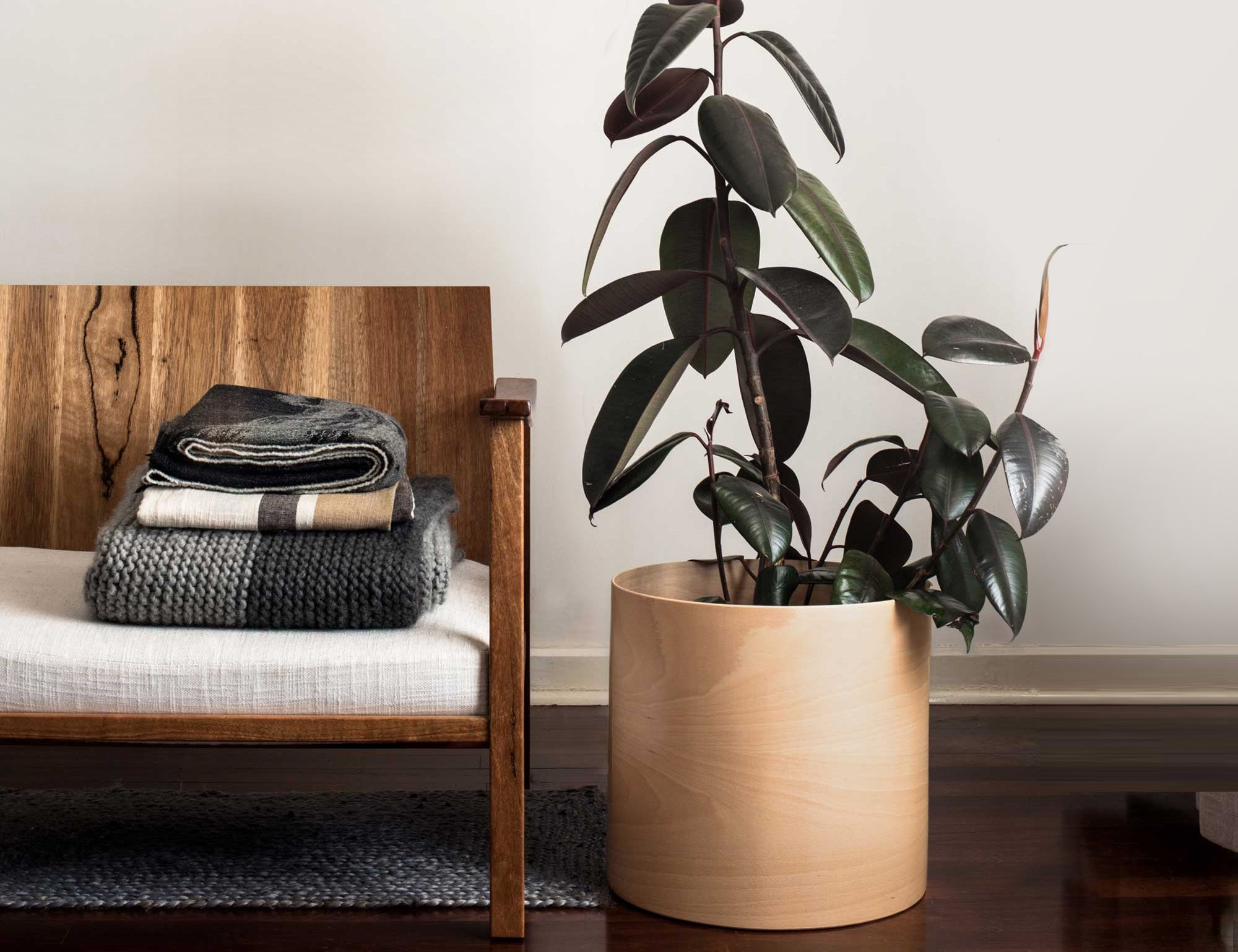 Indoor Plants minimalist furniture scandinavian Plyroom