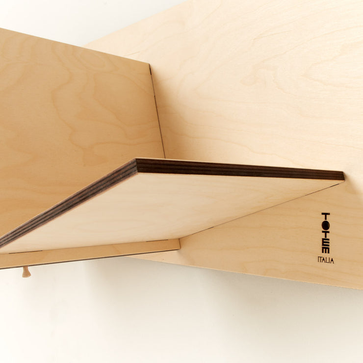 designed minimalist storage solutions