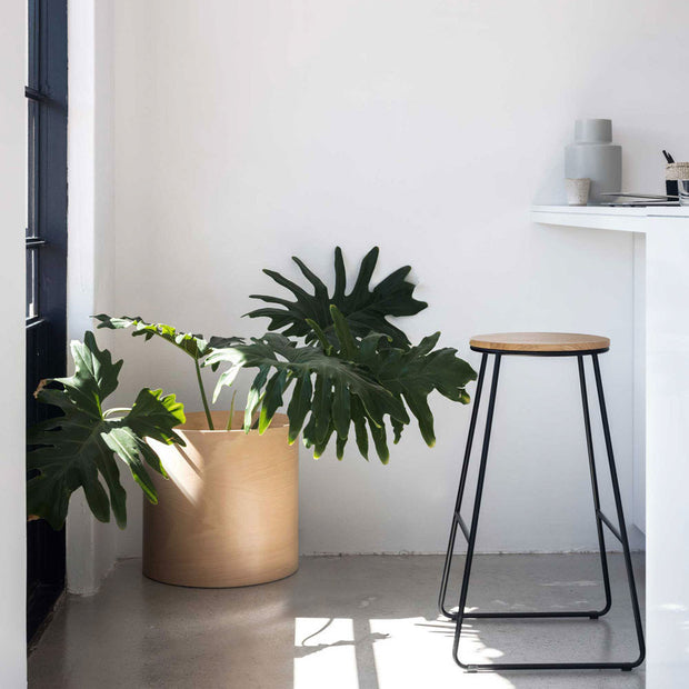 flor planter for indoor plants