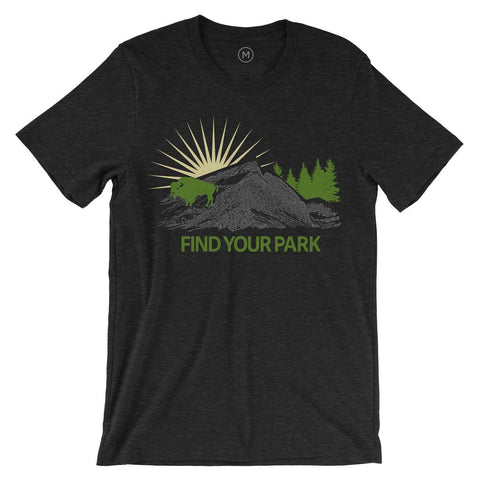 Find Your Park Bison Icon T-Shirt