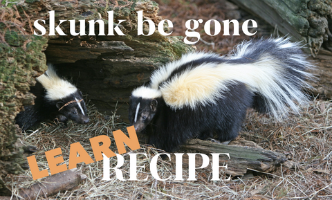 SUMMER RECIPE - SKUNK BE GONE SPRAY