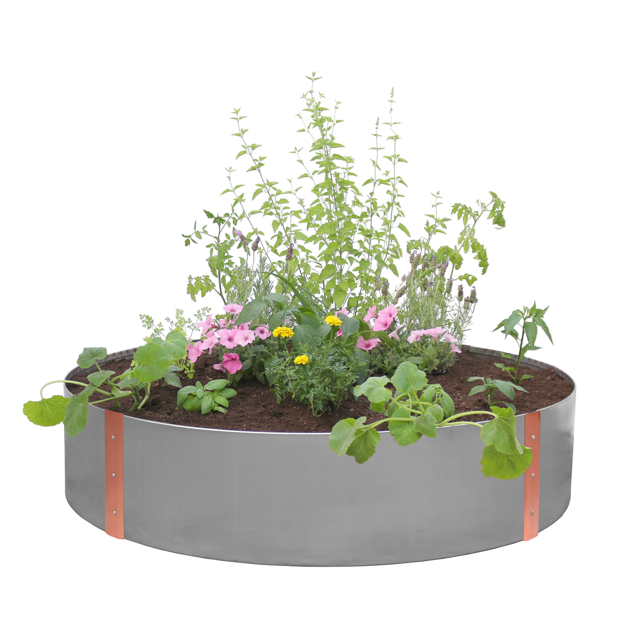 Stainless Steel and Copper Raised Garden Bed - Circle