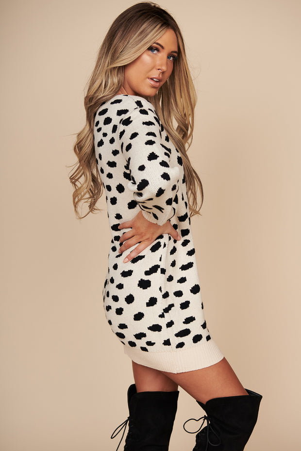 In Your Wildest Dreams Animal Print Sweater Dress (Taupe) - NanaMacs