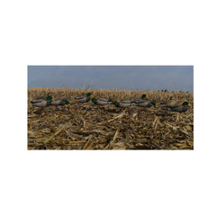 AVERY 12 Pack of Pro-Grade Full Body Mallard With Flocked Heads Harvester Decoys (72217)
