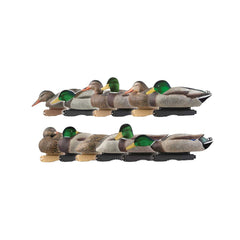 AVERY 12 Pack of Pro-Grade Mallard With Flocked Heads Harvester Decoys (73120)