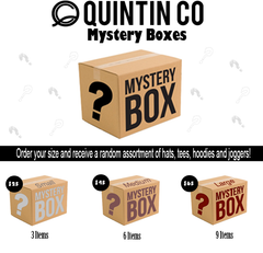 Quintin Co Mystery Box - Medium