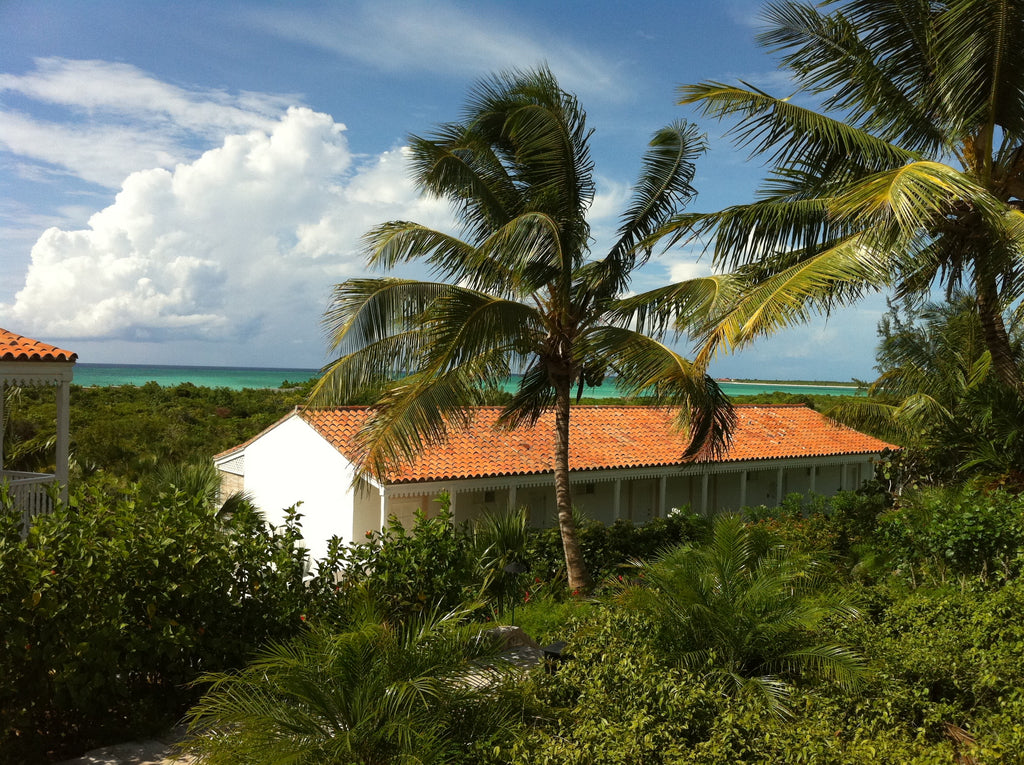 Parrot Cay Turks & Caicos Room with a View