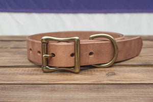 old world harness leather dog collar