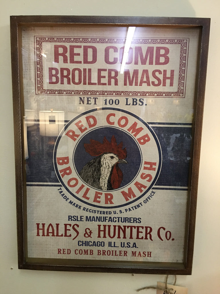 Red Comb Broiler Mash Framed Print