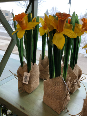 Yellow Daffodil in Burlap Sack