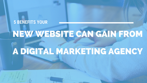 5 Benefits Your New Website Can Gain from A Digital Marketing Agency [809 Words] - article > 800 - Article Blizzard