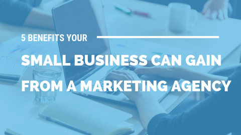 5 Benefits Your Small Business Can Gain from A Marketing Agency [525 Words] - article > 500 - Article Blizzard