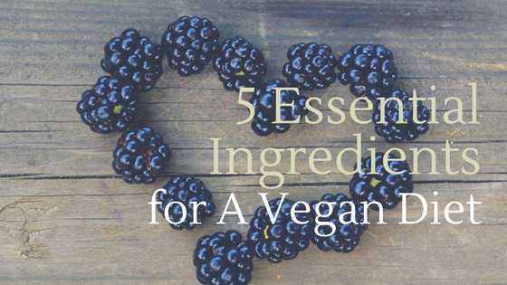 5 Essential Ingredients for A Vegan Diet [528 Words] - article > 500 - Article Blizzard