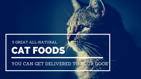 5 Great All-Natural Cat Foods You Can Get Delivered to Your Door [636 Words]