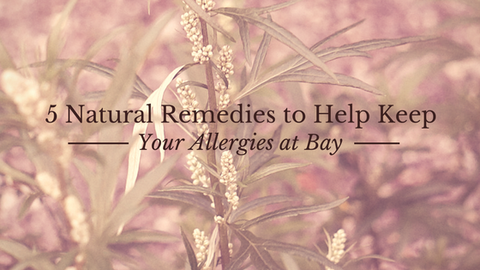 5 Natural Remedies to Help Keep Your Allergies at Bay [615 Words] - article > 600 - Article Blizzard