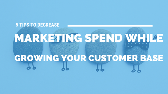 5 Tips to Decrease Marketing Spend While Growing Your Customer Base [636 Words] - article > 600 - Article Blizzard