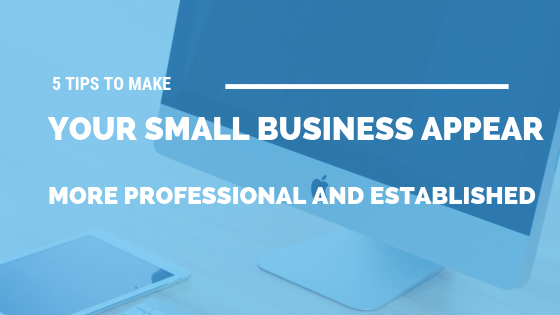 5 Tips to Make Your Small Business Appear More Professional and Established [524 Words] - article > 500 - Article Blizzard