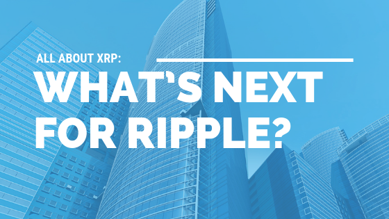 All About XRP: What's Next for Ripple? [533 Words] - article > 500 - Article Blizzard