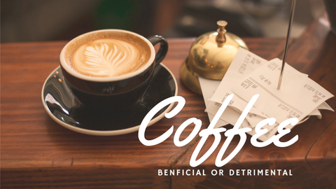 Coffee: Beneficial or Detrimental [610 Words] - article > 600 - Article Blizzard