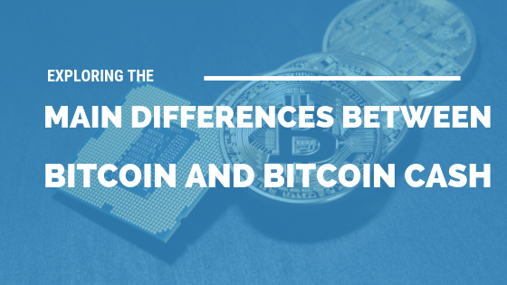 Exploring the Main Differences Between Bitcoin and Bitcoin Cash [511 Words] - article > 500 - Article Blizzard
