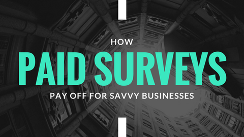 How Paid Surveys Pay Off for Savvy Businesses [661 Words]