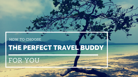 How to Choose the Perfect Travel Buddy for You [547 Words]