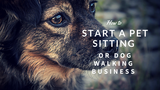 How to Start a Pet Sitting or Dog Walking Business [623 Words] - article > 600 - Article Blizzard