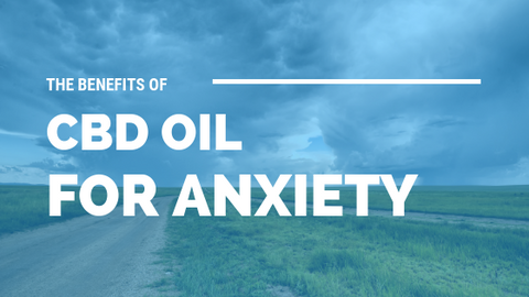 The Benefits of CBD Oil For Anxiety [535 Words]