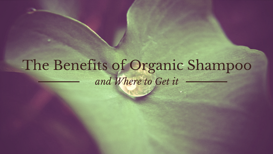 The Benefits of Organic Shampoo and Where to Get it [608 Words] - article > 600 - Article Blizzard