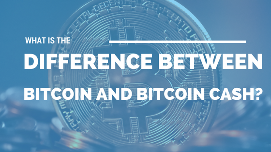 What Is the Difference Between Bitcoin and Bitcoin Cash? [520 Words]