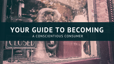 Your Guide to Becoming a Conscientious Consumer [529 Words] - article > 500 - Article Blizzard