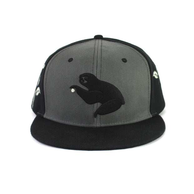 The Grassroots S19 Snapback in Black