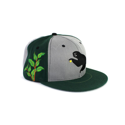 The Grassroots S19 Snapback in Green