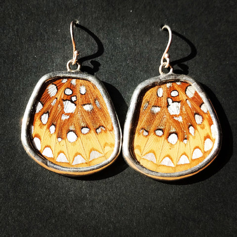 Fritillary Wing Earrings