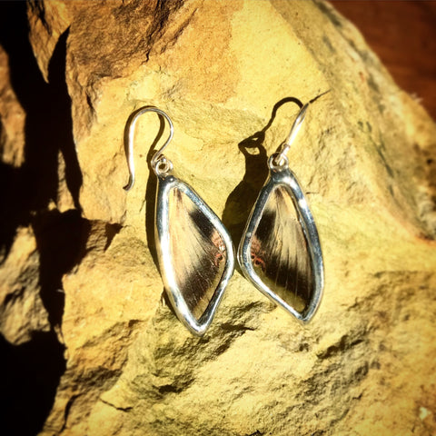 Pandora Sphinx Moth Earrings