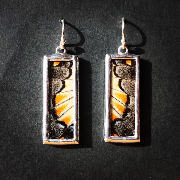 Tiger Swallowtail Earrings
